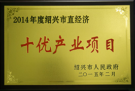 2014年度绍兴市直经济十优产业项目